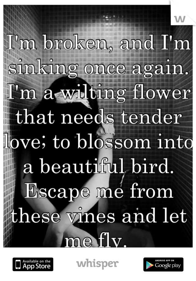 I'm broken, and I'm sinking once again.  I'm a wilting flower that needs tender love; to blossom into a beautiful bird. Escape me from these vines and let me fly.