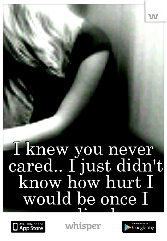 I knew you never cared.. I just didn't know how hurt I would be once I realized.