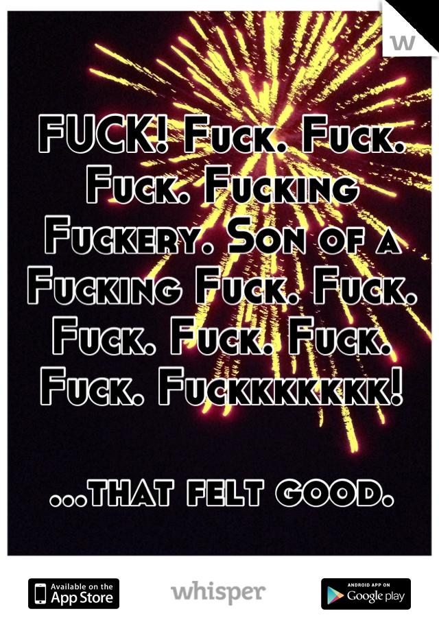 FUCK! Fuck. Fuck. Fuck. Fucking Fuckery. Son of a Fucking Fuck. Fuck. Fuck. Fuck. Fuck. Fuck. Fuckkkkkkk!  ...that felt good.