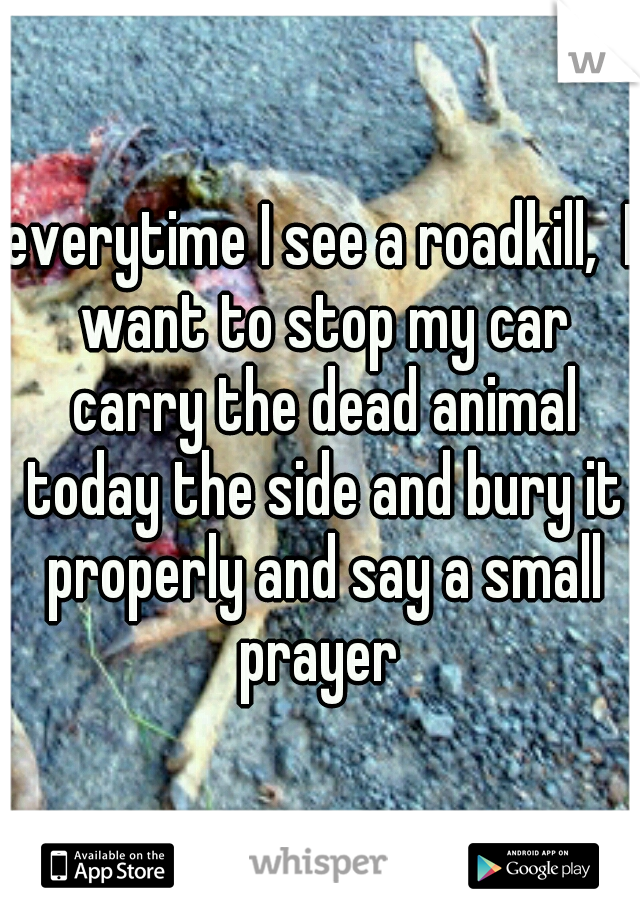 everytime I see a roadkill,  I want to stop my car carry the dead animal today the side and bury it properly and say a small prayer