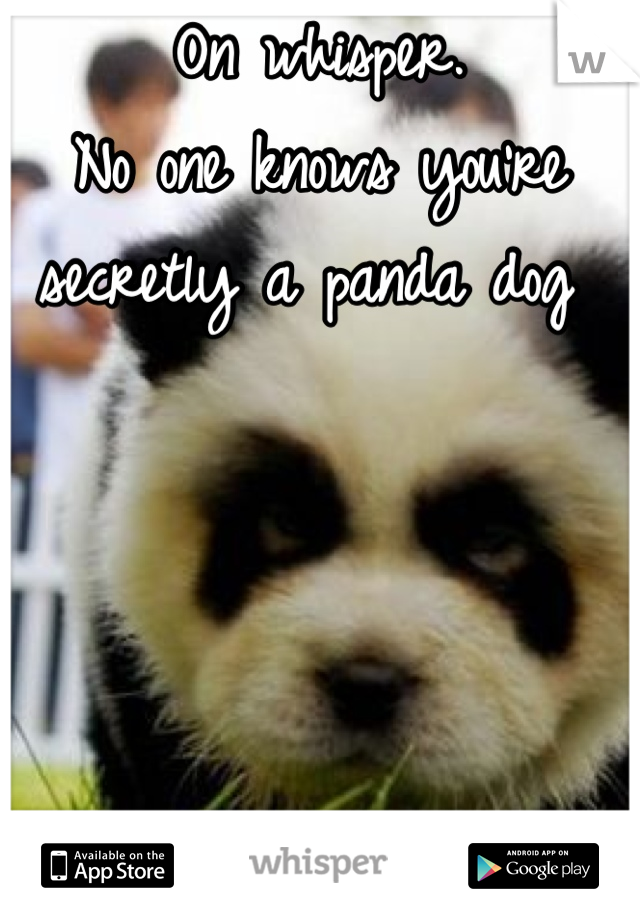 On whisper.  No one knows you're secretly a panda dog