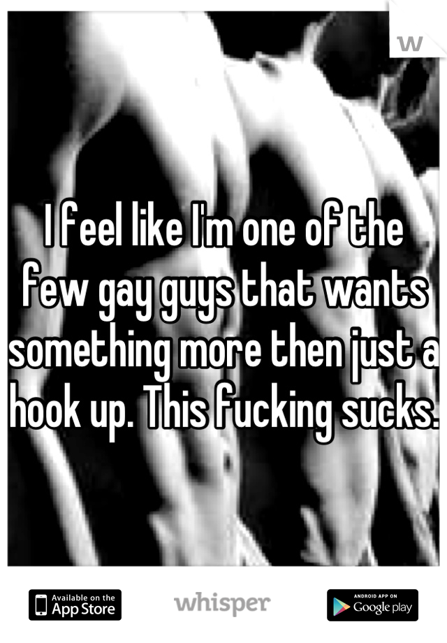 I feel like I'm one of the few gay guys that wants something more then just a hook up. This fucking sucks.