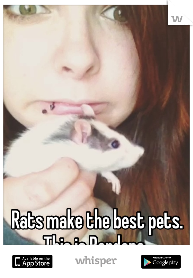 Rats make the best pets. This is Pandora.