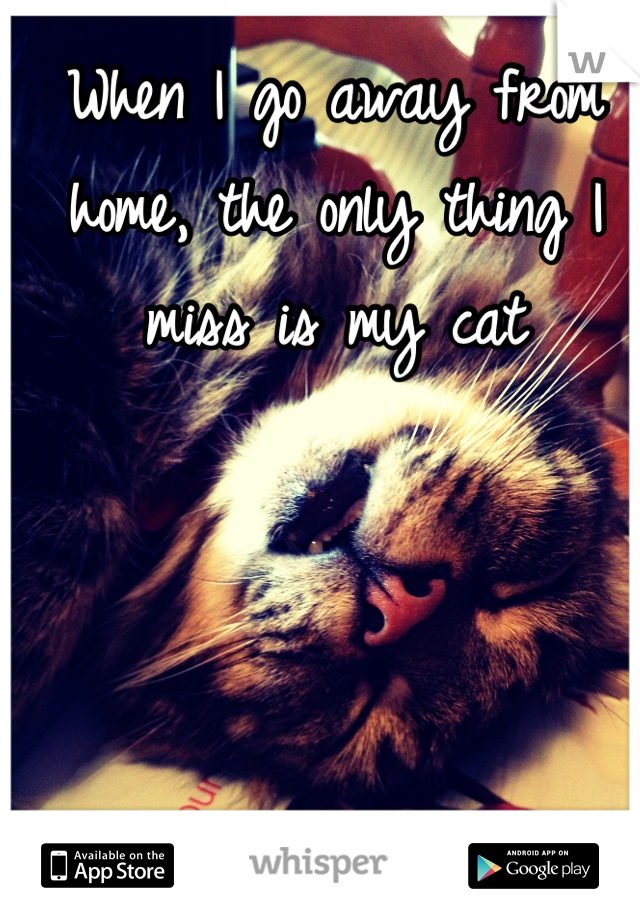 When I go away from home, the only thing I miss is my cat