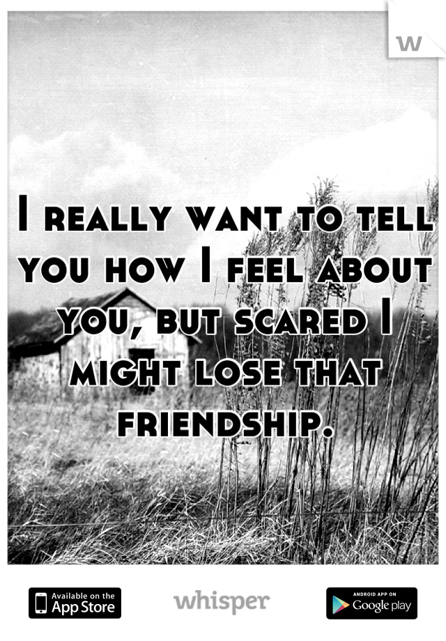 I really want to tell you how I feel about you, but scared I might lose that friendship.