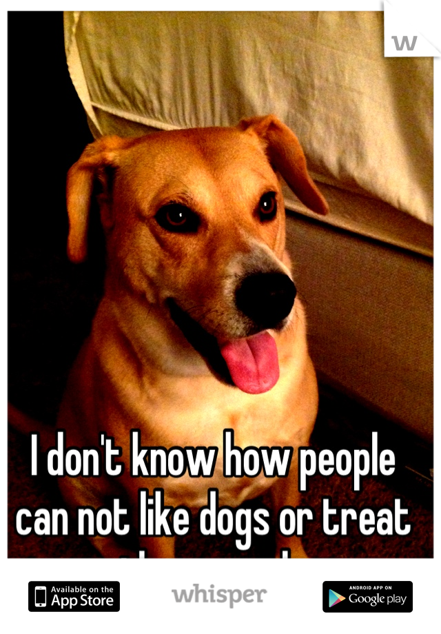I don't know how people can not like dogs or treat them poorly
