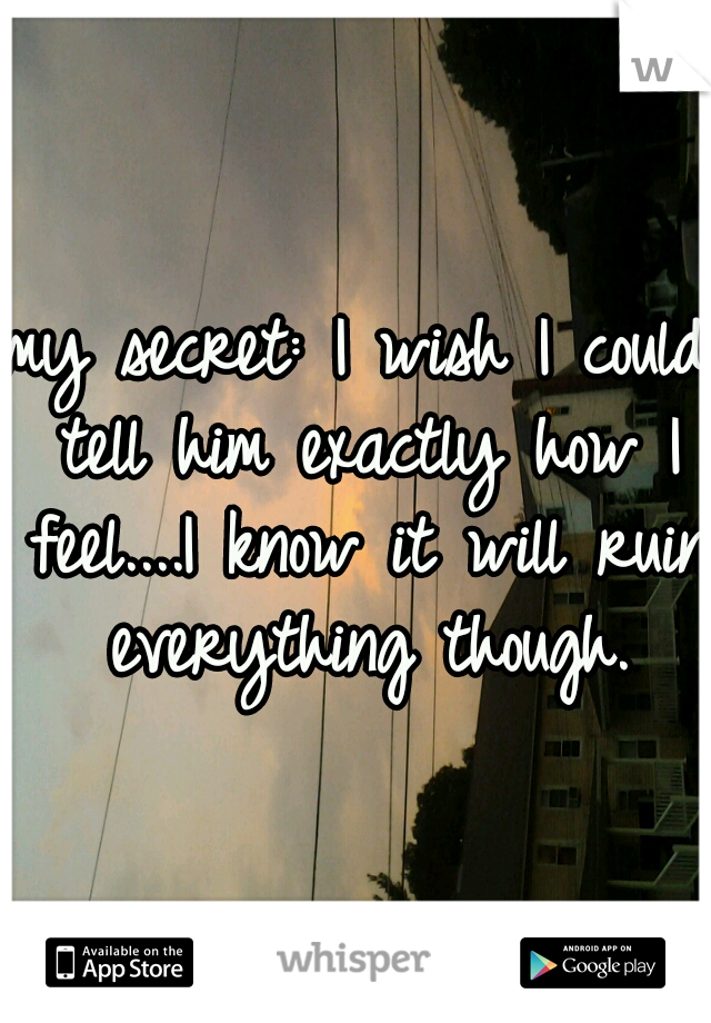 my secret: I wish I could tell him exactly how I feel....I know it will ruin everything though.