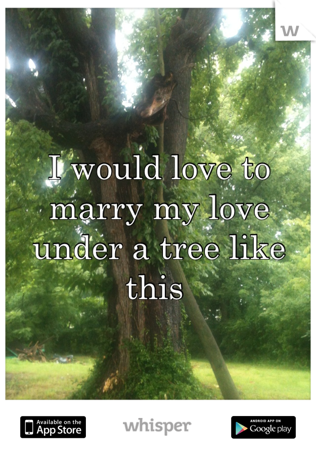I would love to marry my love under a tree like this