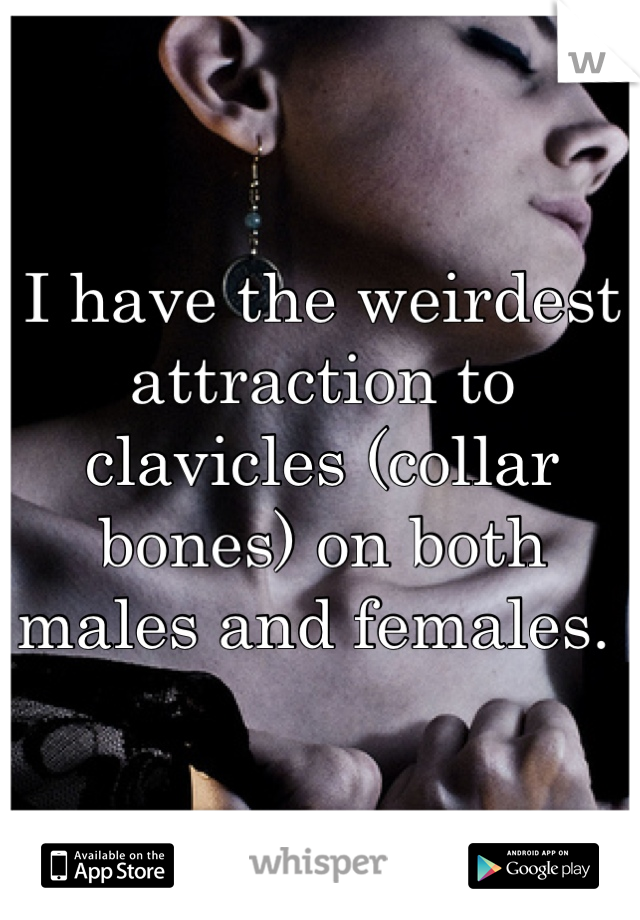 I have the weirdest attraction to clavicles (collar bones) on both males and females.