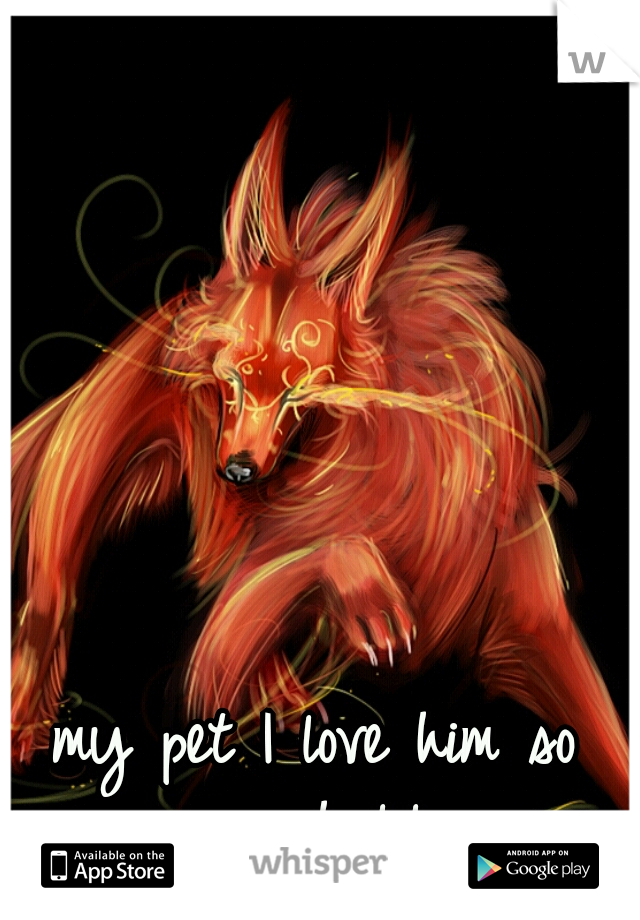 my pet I love him so much lol