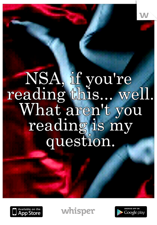 NSA, if you're reading this... well. What aren't you reading is my question.