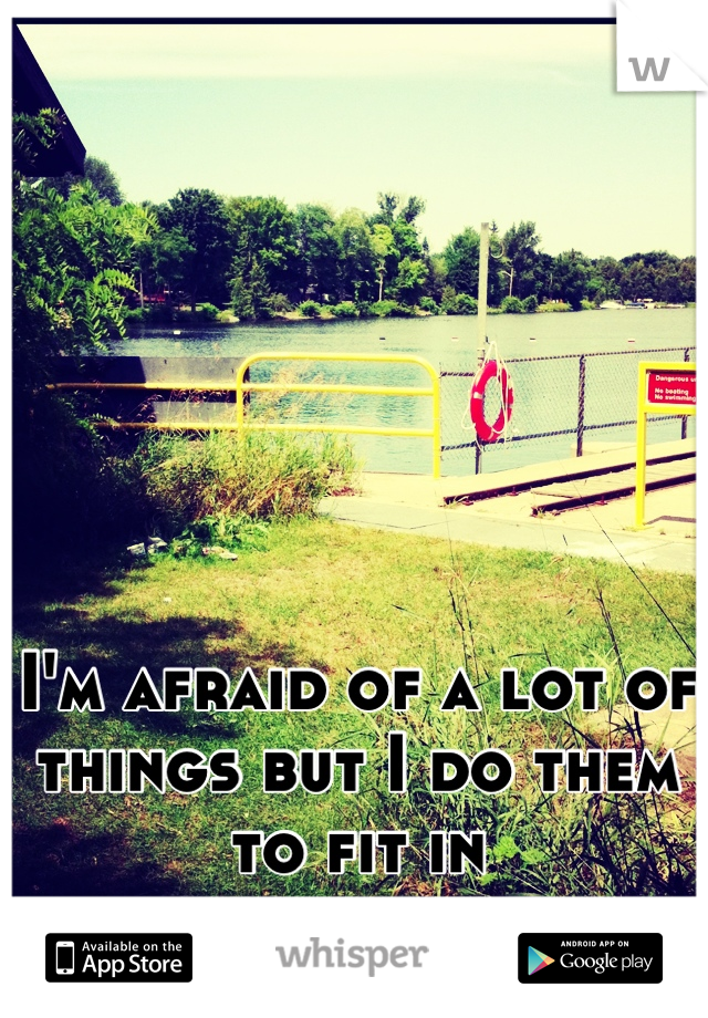 I'm afraid of a lot of things but I do them to fit in