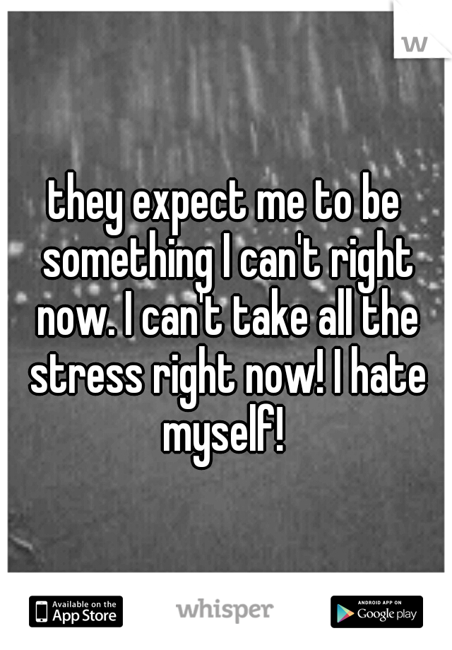 they expect me to be something I can't right now. I can't take all the stress right now! I hate myself!