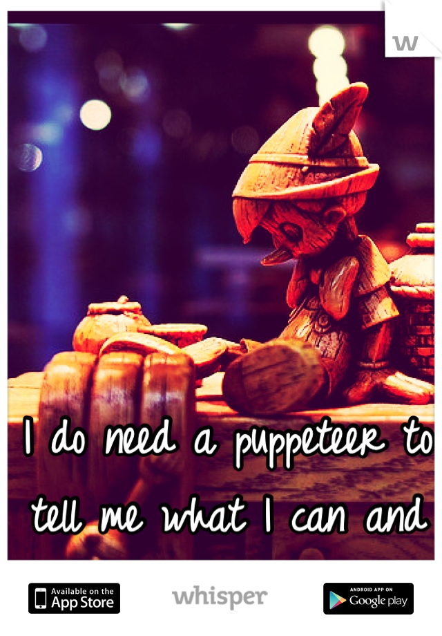 I do need a puppeteer to tell me what I can and can not do