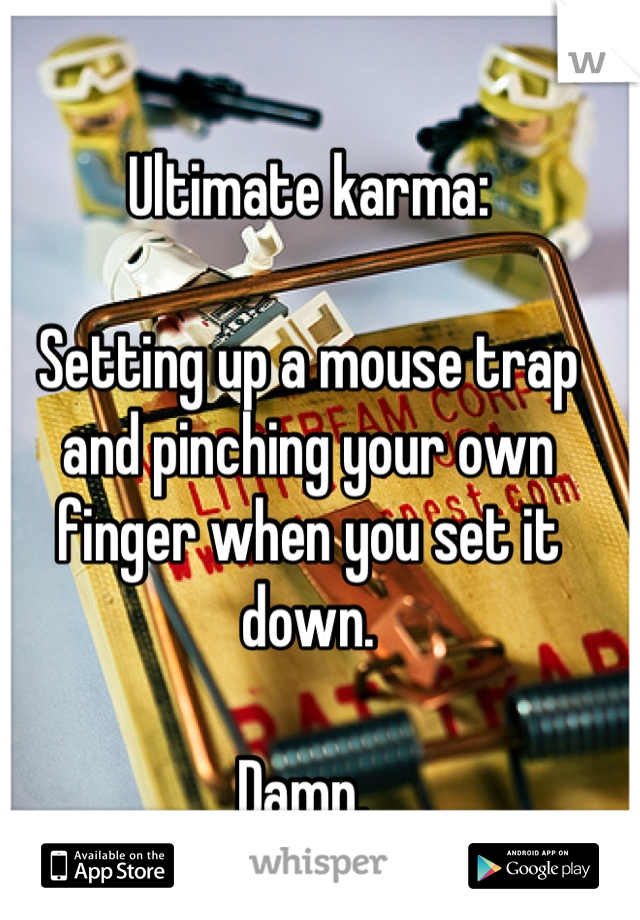 Ultimate karma:  Setting up a mouse trap and pinching your own finger when you set it down.   Damn.