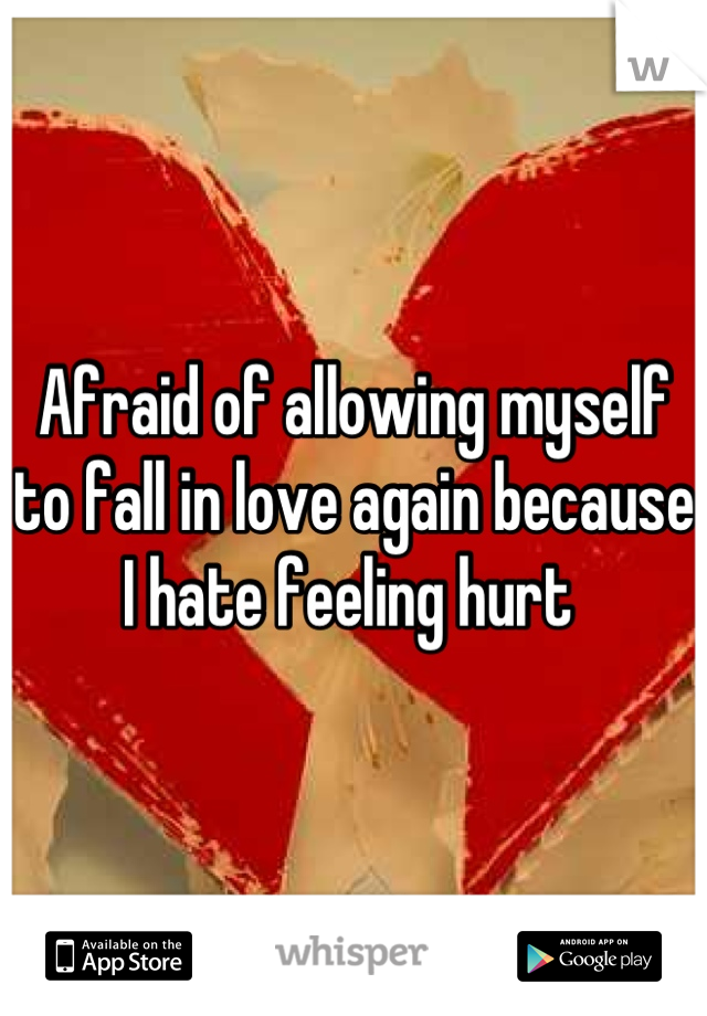 Afraid of allowing myself to fall in love again because I hate feeling hurt