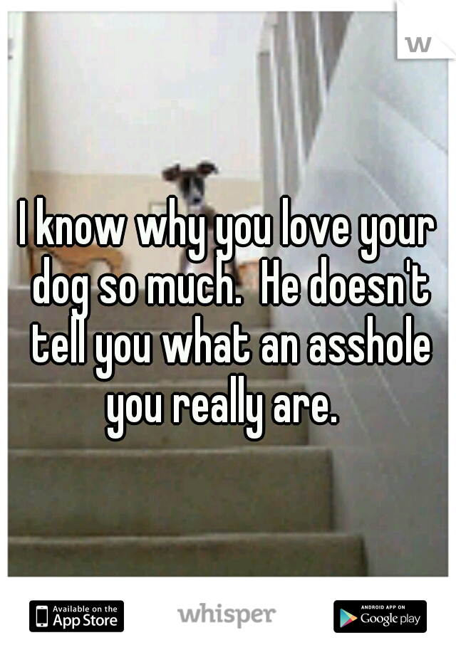 I know why you love your dog so much.  He doesn't tell you what an asshole you really are.