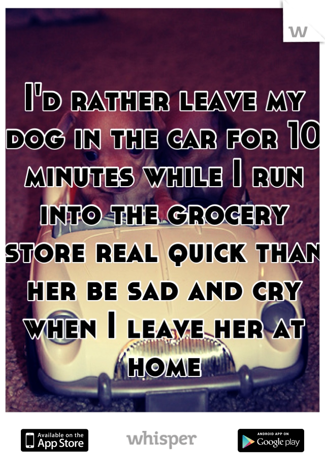 I'd rather leave my dog in the car for 10 minutes while I run into the grocery store real quick than her be sad and cry when I leave her at home