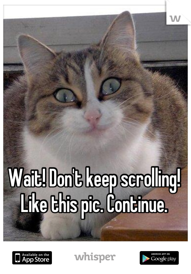 Wait! Don't keep scrolling! Like this pic. Continue.