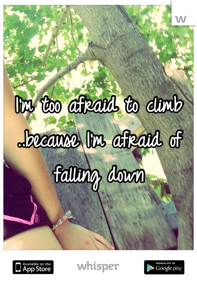 I'm too afraid to climb ..because I'm afraid of falling down