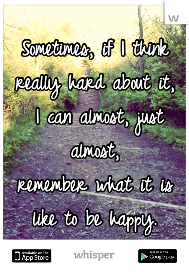 Sometimes, if I think really hard about it,  I can almost, just almost,  remember what it is like to be happy.
