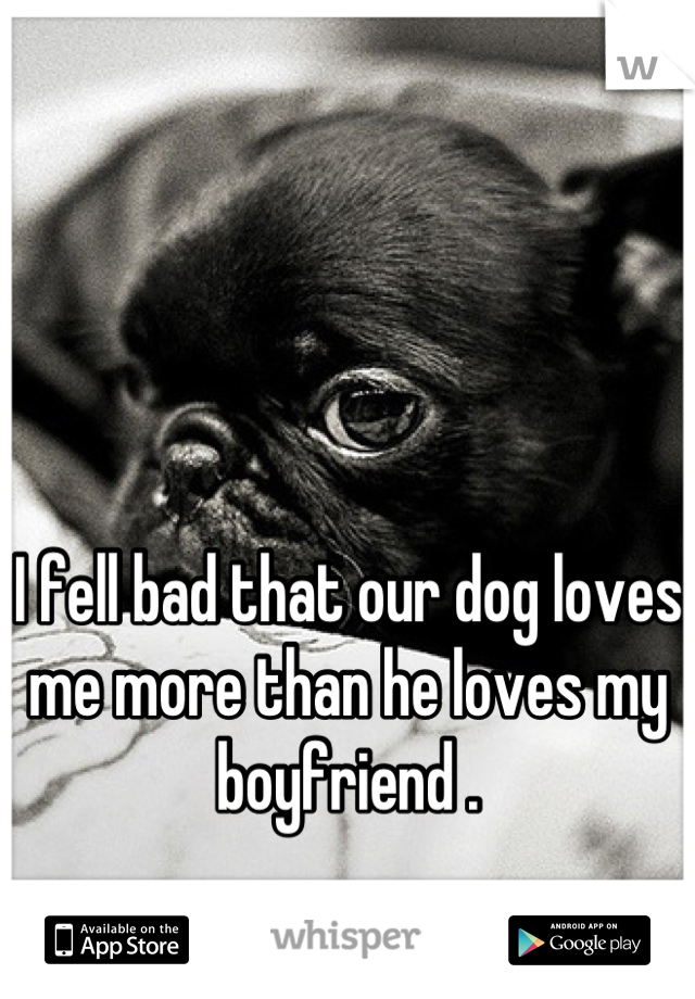 I fell bad that our dog loves me more than he loves my boyfriend .