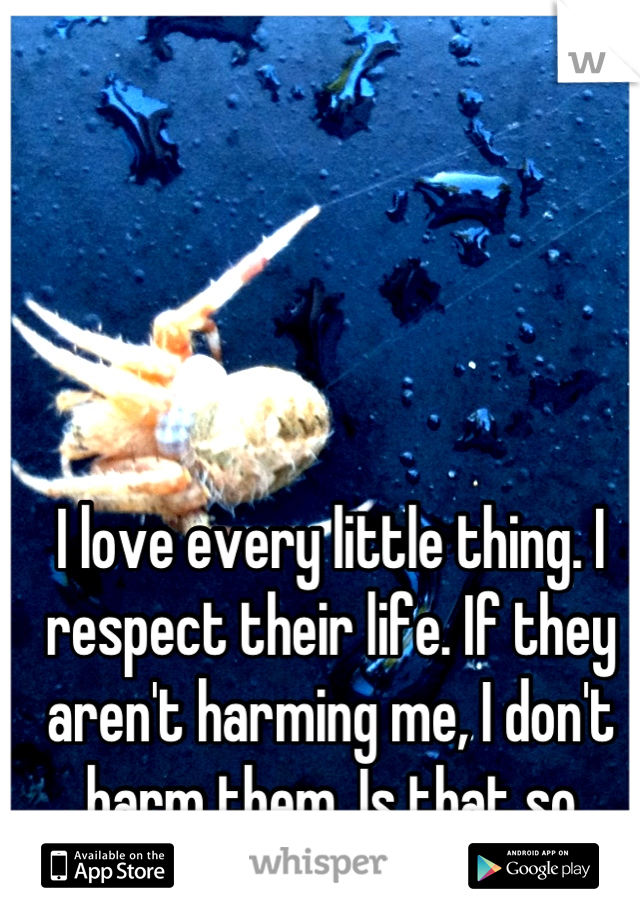 I love every little thing. I respect their life. If they aren't harming me, I don't harm them. Is that so wrong??
