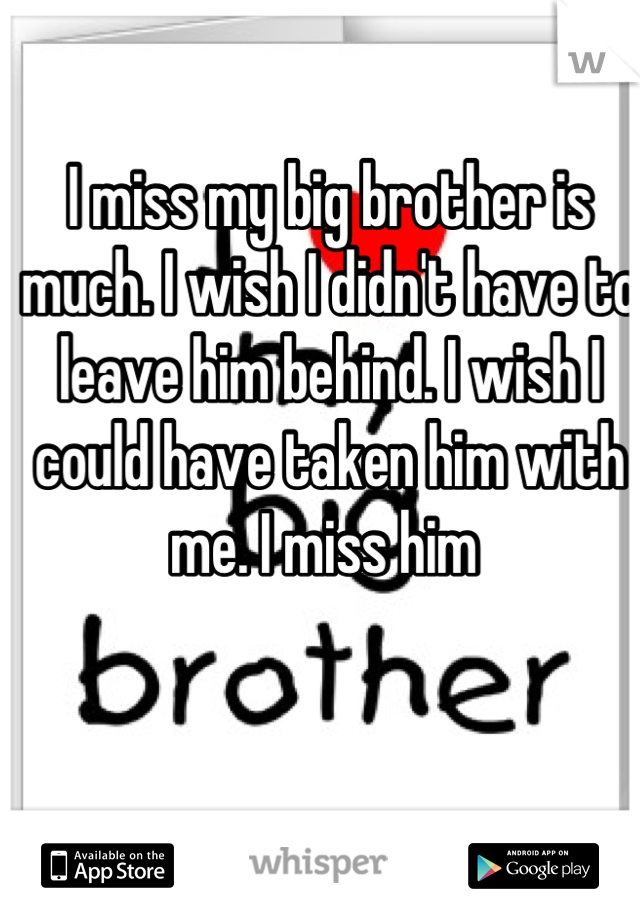 I miss my big brother is much. I wish I didn't have to leave him behind. I wish I could have taken him with me. I miss him