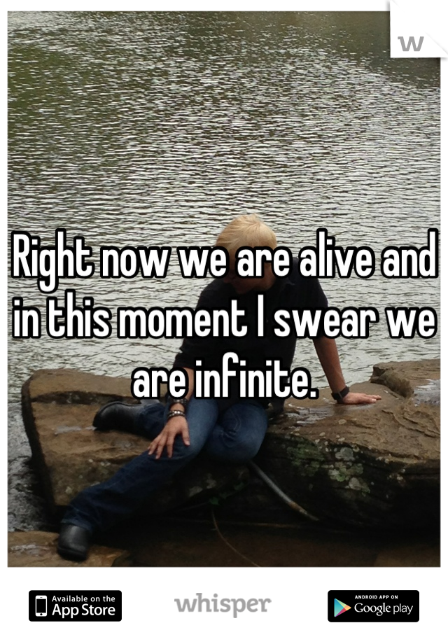 Right now we are alive and in this moment I swear we are infinite.
