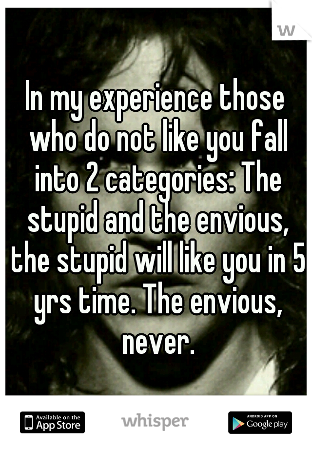 In my experience those who do not like you fall into 2 categories: The stupid and the envious, the stupid will like you in 5 yrs time. The envious, never.