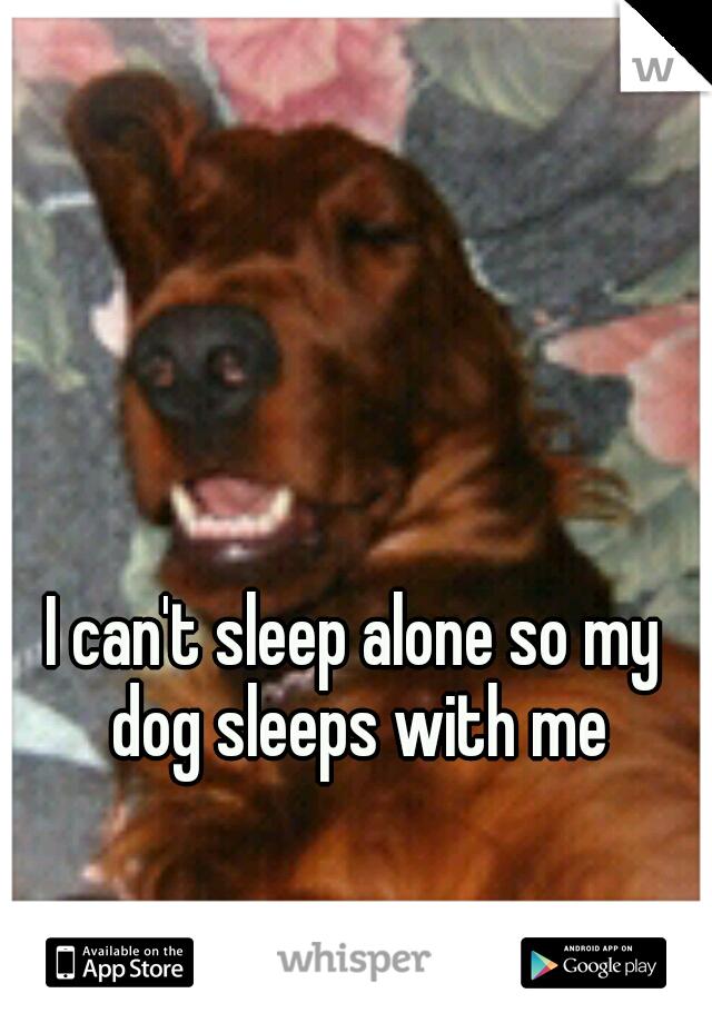 I can't sleep alone so my dog sleeps with me