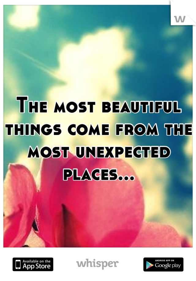 The most beautiful things come from the most unexpected places...