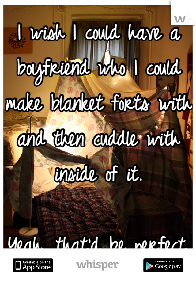 I wish I could have a boyfriend who I could make blanket forts with and then cuddle with inside of it.  Yeah, that'd be perfect.