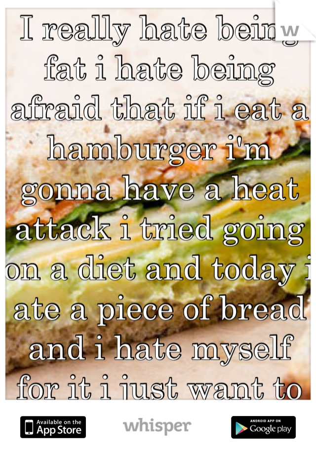I really hate being fat i hate being afraid that if i eat a hamburger i'm gonna have a heat attack i tried going on a diet and today i ate a piece of bread and i hate myself for it i just want to be ok