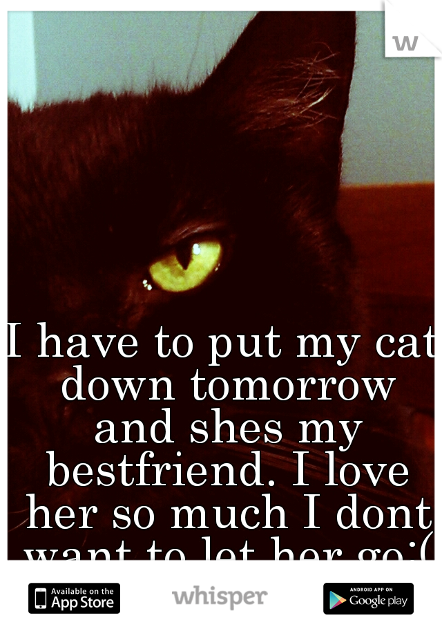 I have to put my cat down tomorrow and shes my bestfriend. I love her so much I dont want to let her go:(