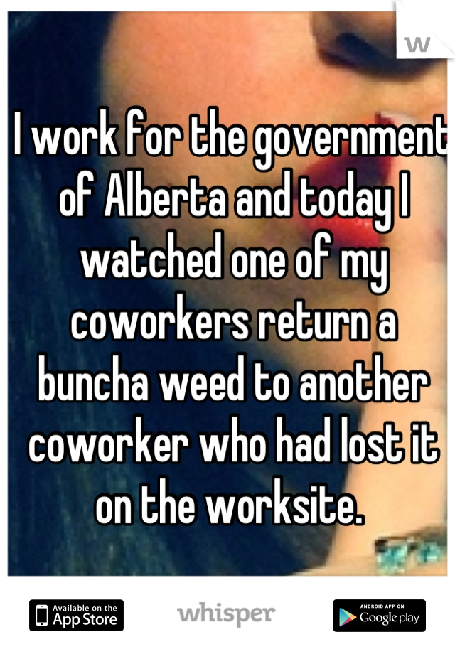 I work for the government of Alberta and today I watched one of my coworkers return a buncha weed to another coworker who had lost it on the worksite.
