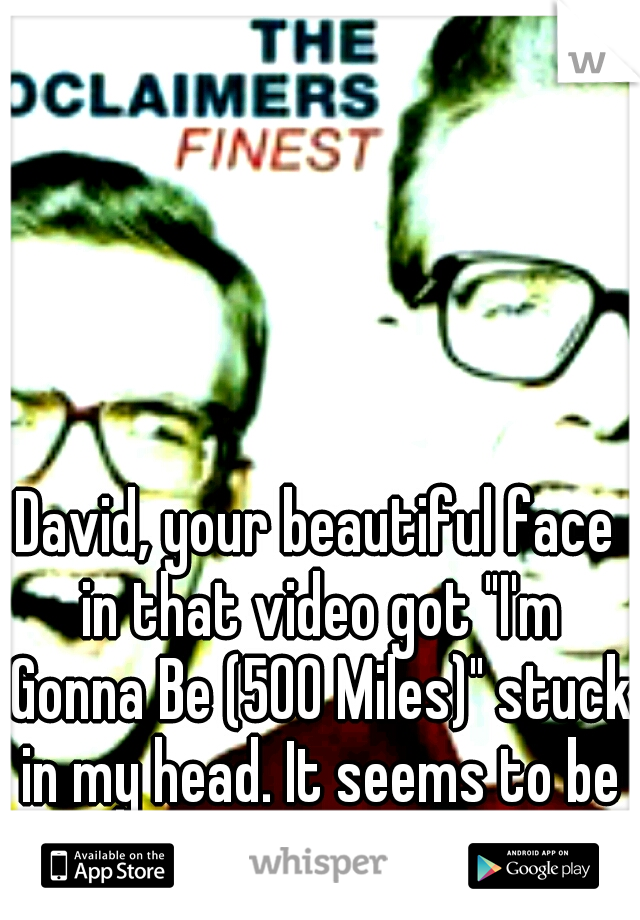 """David, your beautiful face in that video got """"I'm Gonna Be (500 Miles)"""" stuck in my head. It seems to be permanent."""