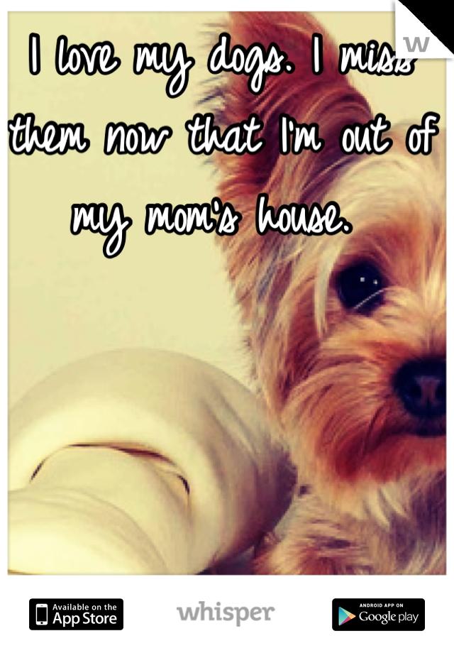 I love my dogs. I miss them now that I'm out of my mom's house.