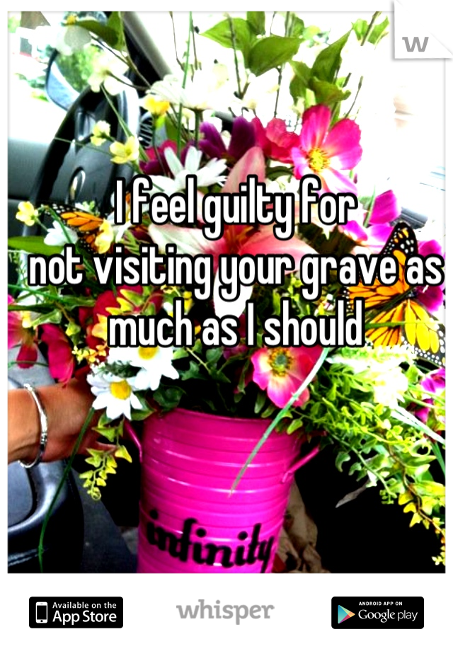 I feel guilty for not visiting your grave as much as I should