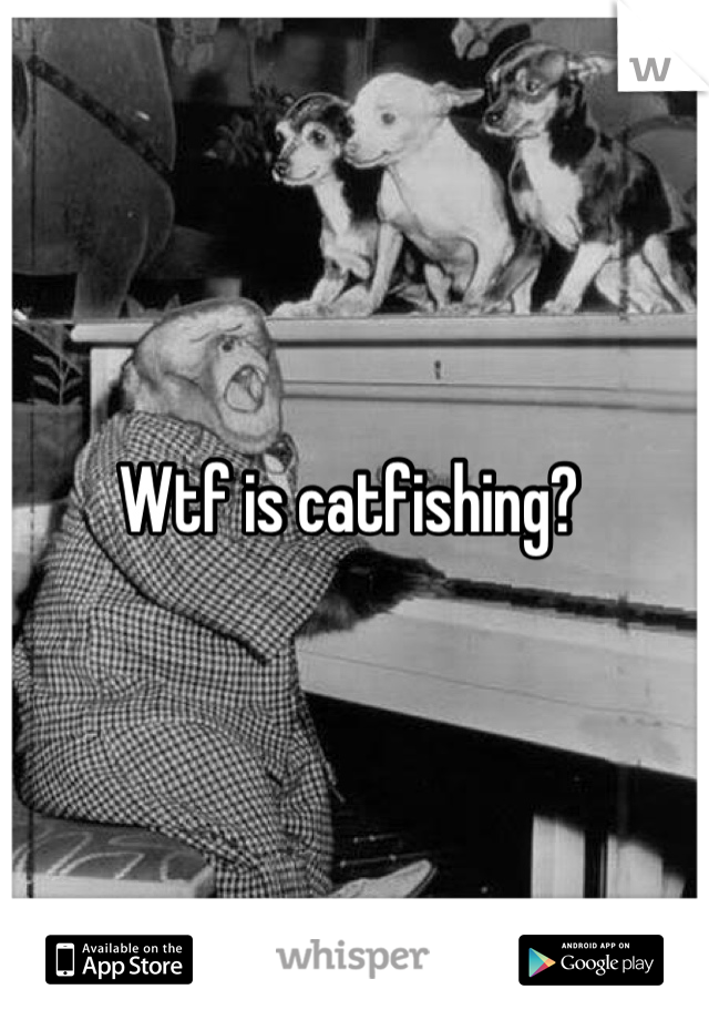 Wtf is catfishing?
