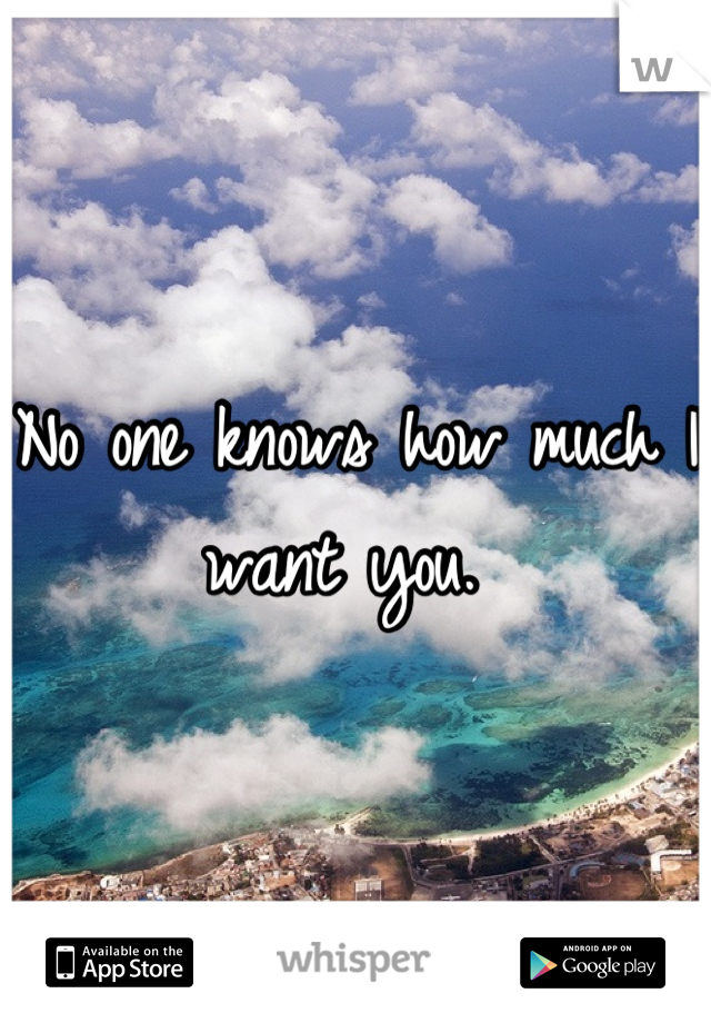 No one knows how much I want you.