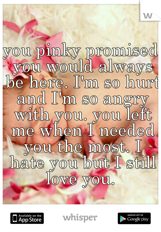 you pinky promised you would always be here. I'm so hurt and I'm so angry with you. you left me when I needed you the most. I hate you but I still love you.