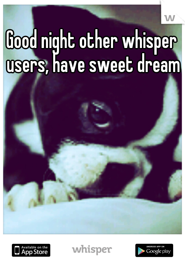 Good night other whisper users, have sweet dreams