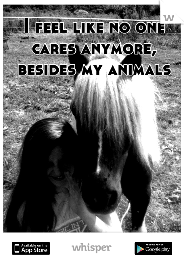 I feel like no one cares anymore, besides my animals