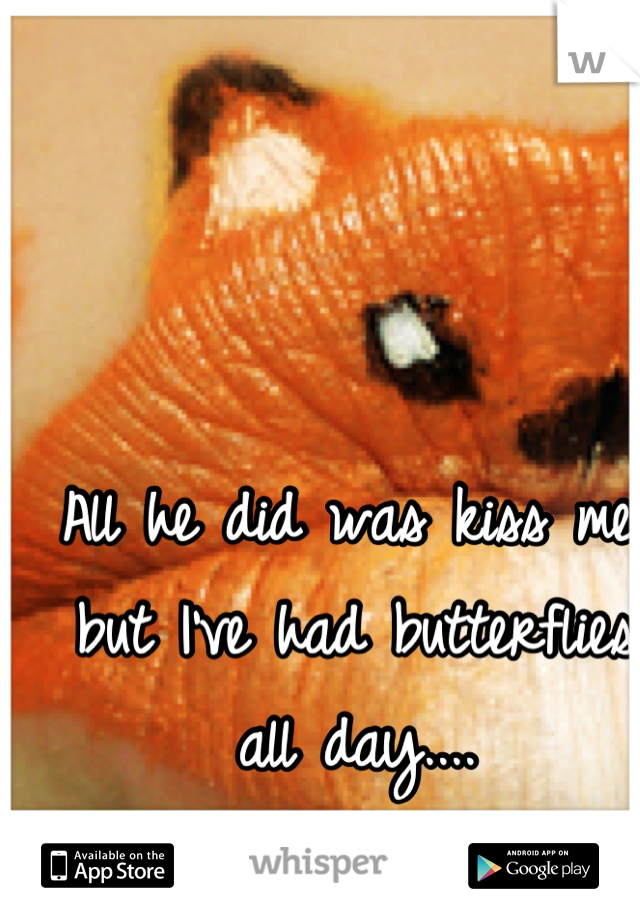 All he did was kiss me, but I've had butterflies all day....