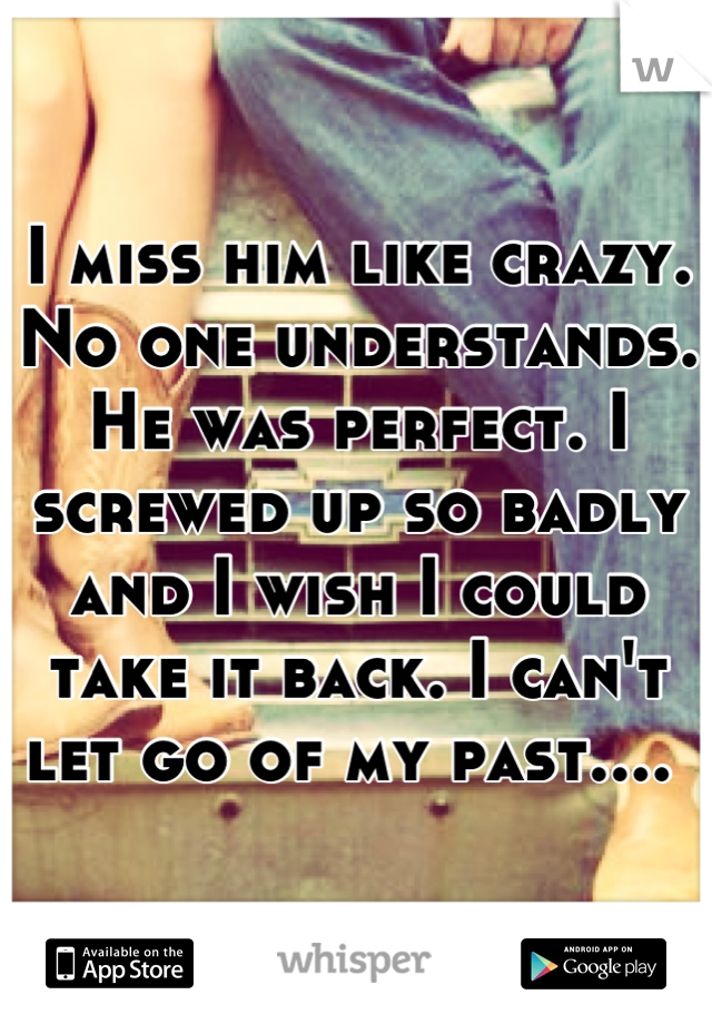 I miss him like crazy. No one understands. He was perfect. I screwed up so badly and I wish I could take it back. I can't let go of my past....