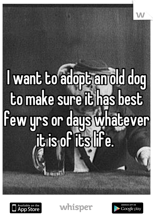 I want to adopt an old dog to make sure it has best few yrs or days whatever it is of its life.