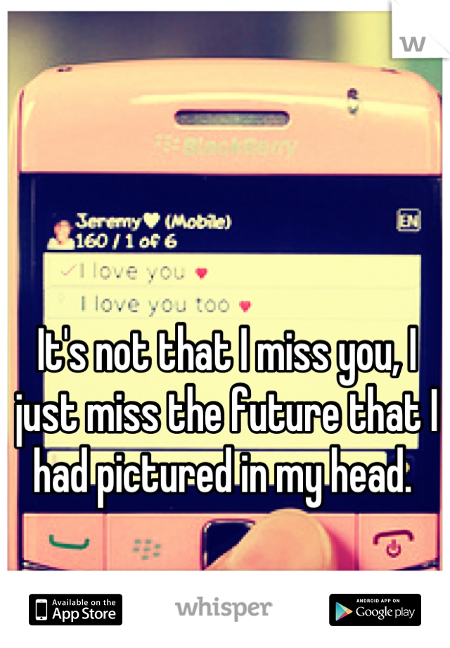 It's not that I miss you, I just miss the future that I had pictured in my head.