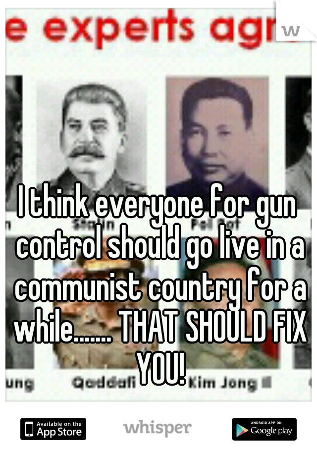 I think everyone for gun control should go live in a communist country for a while....... THAT SHOULD FIX YOU!