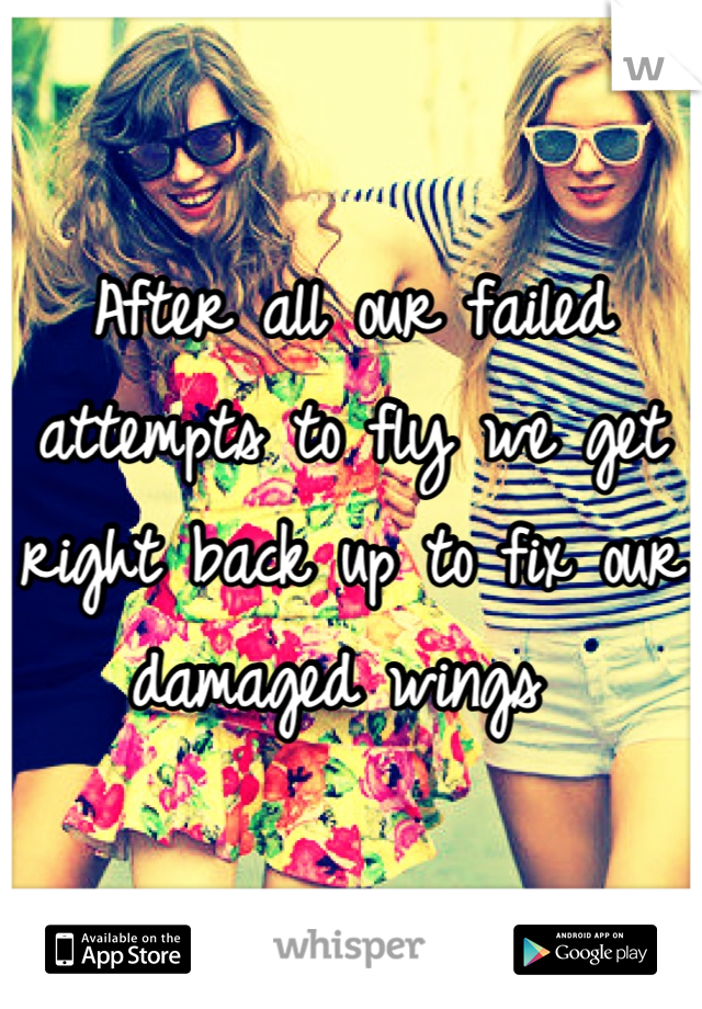 After all our failed attempts to fly we get right back up to fix our damaged wings